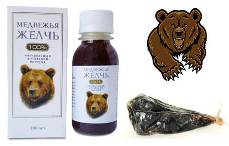 Лечебные свойства желчи медведя