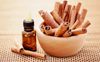 Эфирное масло корицы свойства и применение