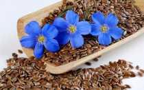 Семя льна применение и что оно лечит