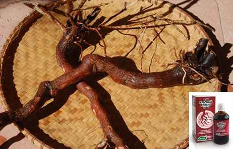 Настойка красного корня