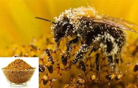 Как принимать пчелиную пыльцу